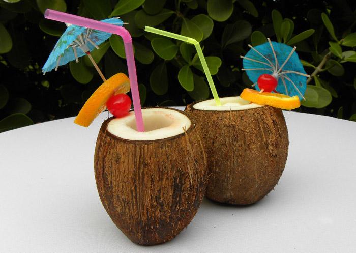 Finlandia Coconut drin