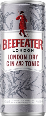 Beefeater London Dry Gin & Tonic 4,9% 0,25 L